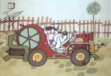 Kočičí auto