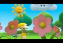 Šťastné květiny