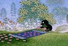 Krtek a koberec