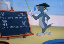 Profesor Tom