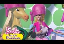 Tawny tráví den s Barbie