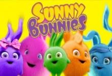 Sluneční králíčci