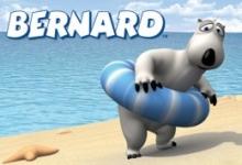 Medvěd Bernard