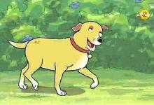Slovesným psem když akce volá