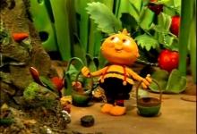Čmelda zahradníkem