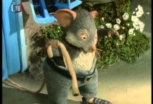 Myška bez ocásku