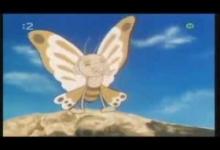 Nespokojený motýlek
