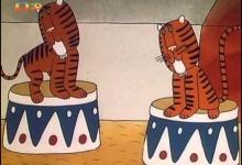 Cirkus ve městě