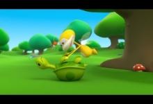 Želva v problémech